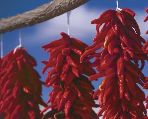 hanging red chiles